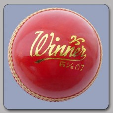 Winner Cricket Ball